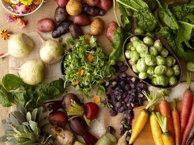 The importance of healthy eating and why it should be a top priority