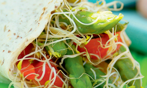 vegetable and alfalfa sprout wrap recipe