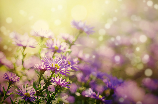 15 Instant Mood Boosters Fresh air