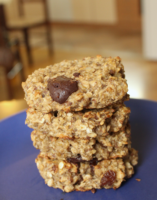 Healthy Chocolate Coconut Oatmeal Cookie Recipe 05